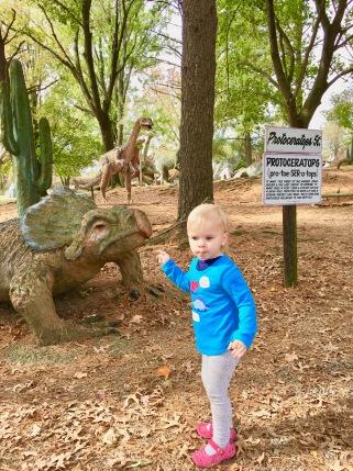 dinosaur land 12