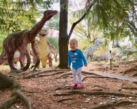 dinosaur land 3