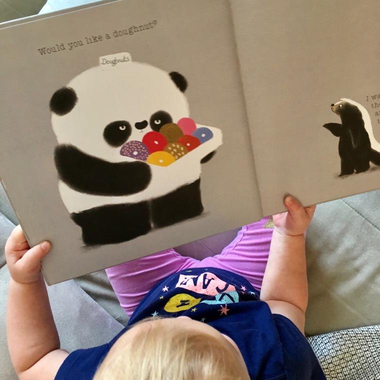 Please Mr Panda book