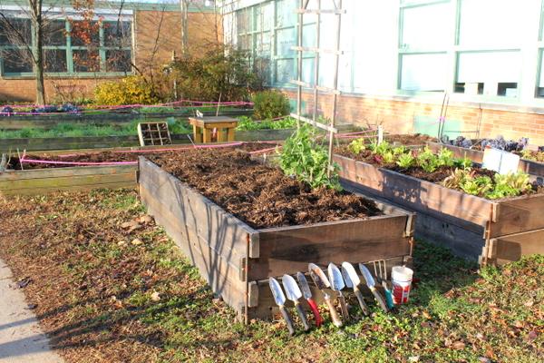 school-courtyard-gardens-Jessica Claire Haney